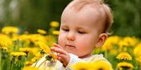 die-natur-mit-kindern-entdecken-tipps-fuer-familien