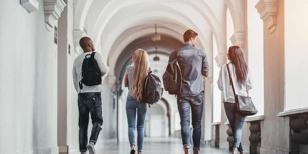 Université étudiants