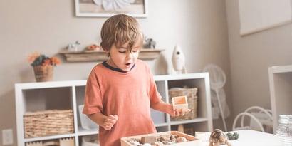 The Complete Guide to Montessori Schools
