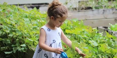 Mit Kindern im Garten: So macht das Gärtnern Spaß! (7 Tipps)