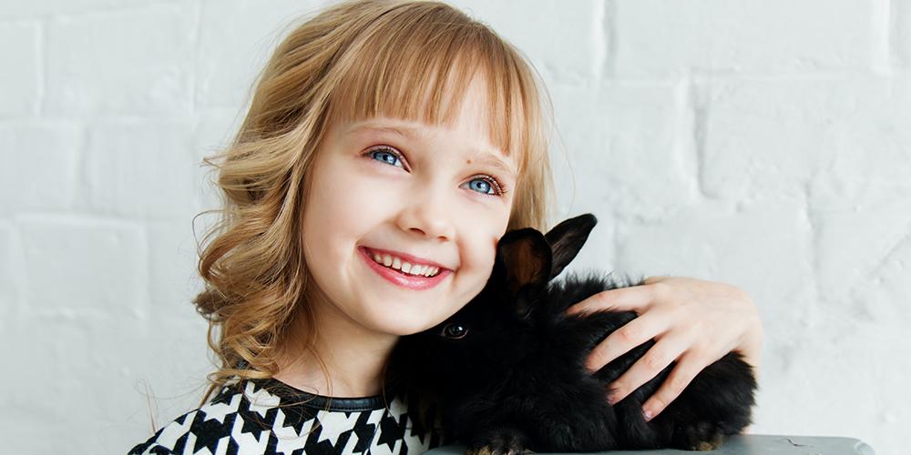 die-acht-besten-kleinen-haustiere-für-kinder